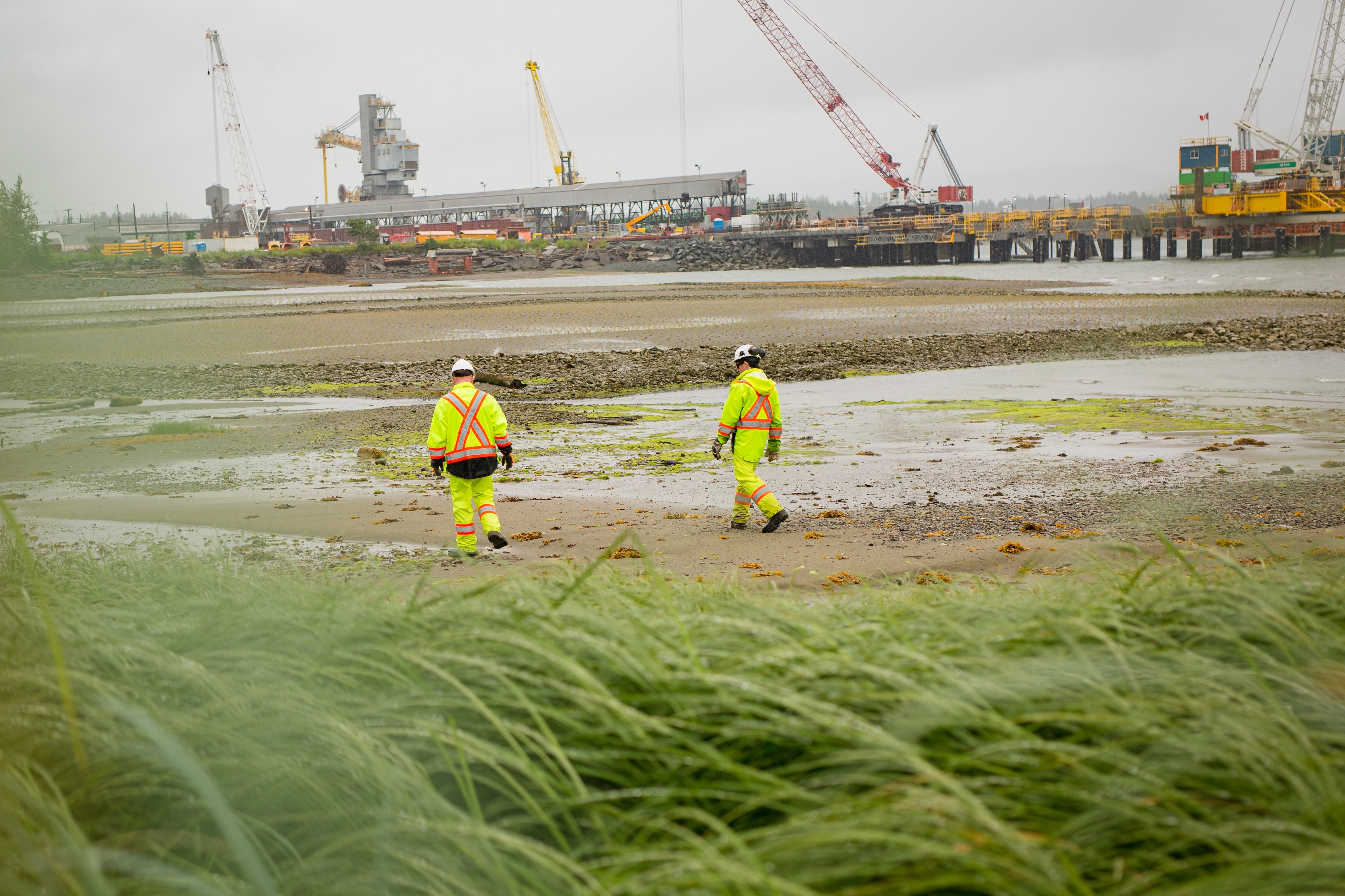 Physically distant workers walking at a beach
